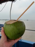 Coconutsjuice